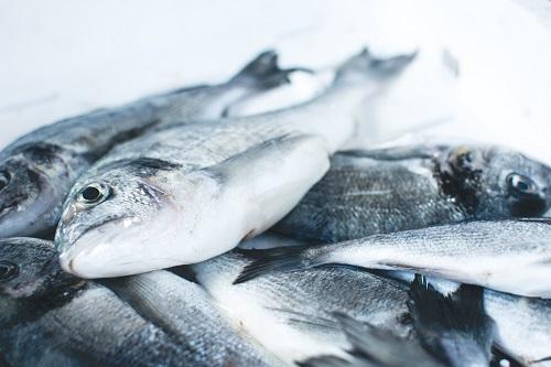 poissonerie en ligne